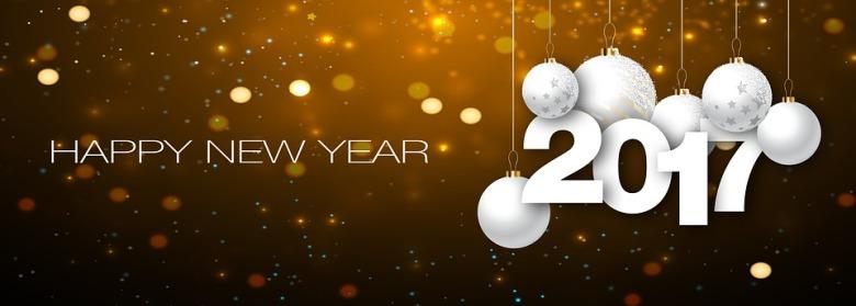 new-year-1898553_960_720